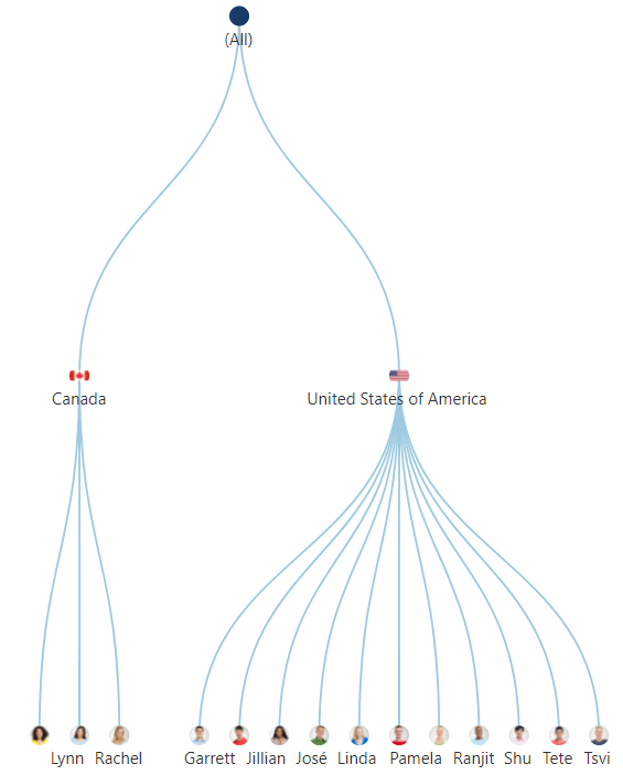 A tree diagram visualizing the sales team organization across different countries