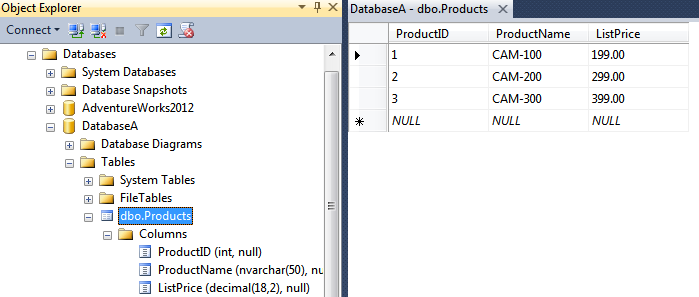 SQL Server database for the first tenant