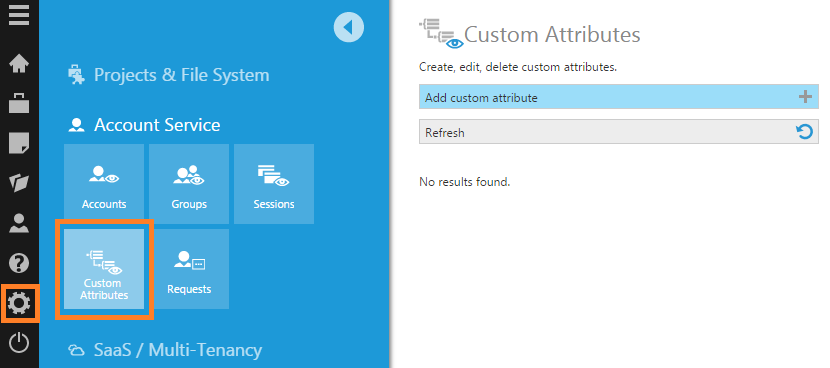 Click Add custom attribute