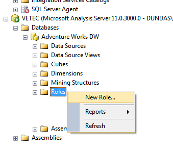 Create a new role in SSAS