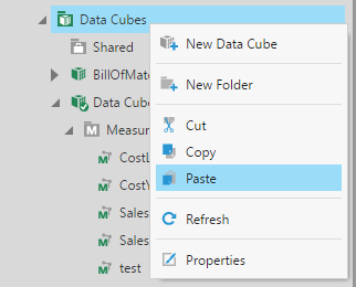 Paste the copy of the data cube in the Data Cubes folder.