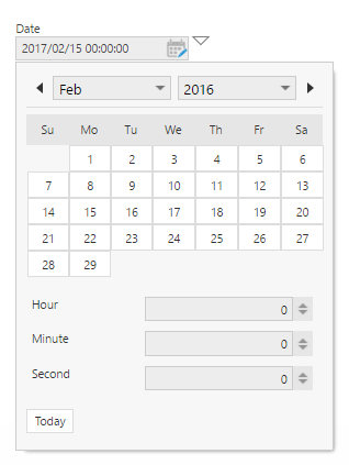 Open the Date/Time picker in View mode